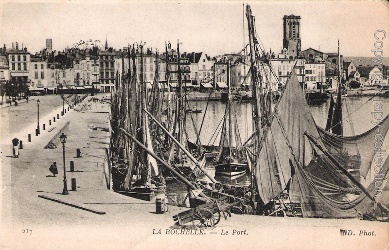 217 La Rochelle.- Le port  ND. Phot.